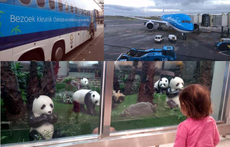 klm-schiphol-chengdu-bus-dreamliner-zonnebloem-panda
